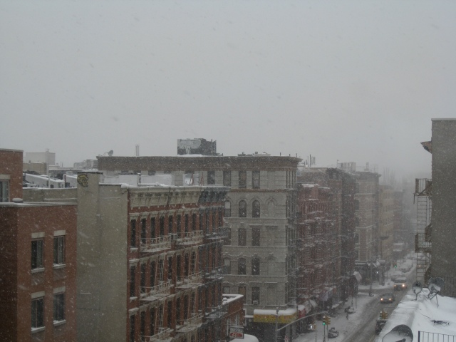 SALIM VIRJI SNOWFALL ON ALPHABET CITY